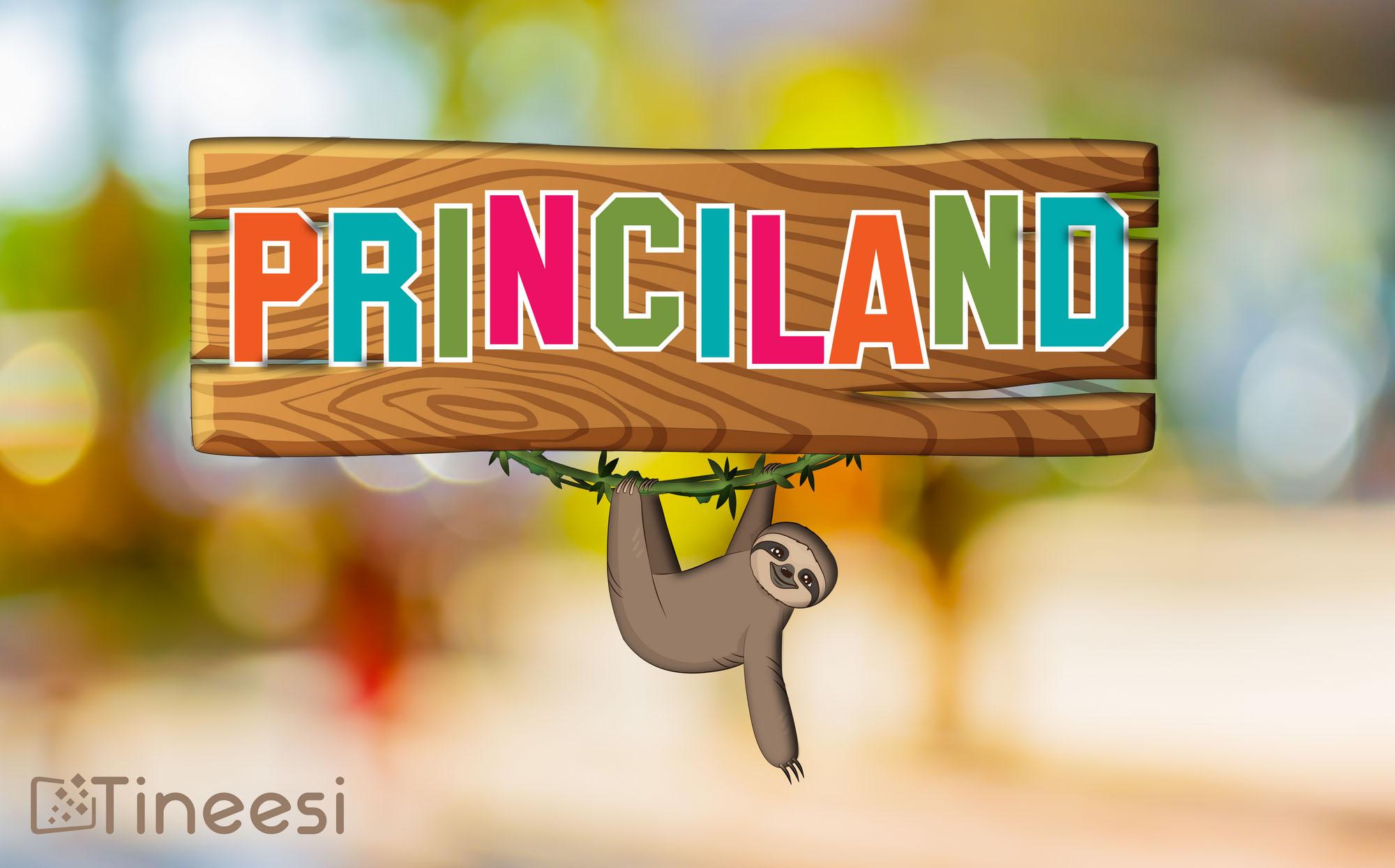 2017-03-princiland – logo (Copier)